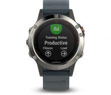Garmin Fenix 5 Silver Multispor Akıllı Saat-Lacivert